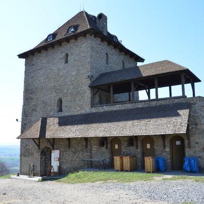 Zřícenina hradu Starý Jičín možná odkryje všechna svá tajemství, foto: Richard Šipka